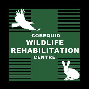 Cobequid Wildlife Rehabilitation Centre